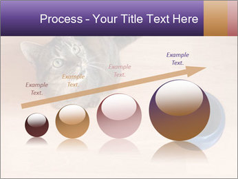 0000074125 PowerPoint Template - Slide 87