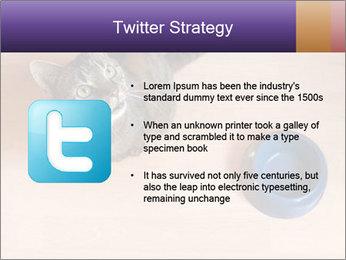 0000074125 PowerPoint Template - Slide 9