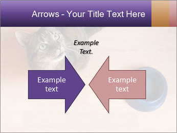 0000074125 PowerPoint Template - Slide 90