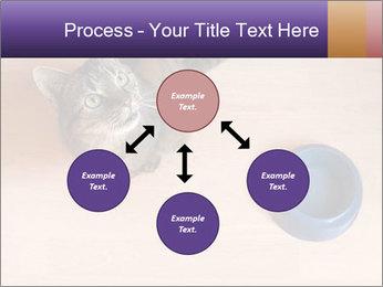 0000074125 PowerPoint Template - Slide 91