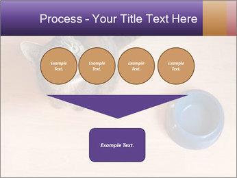 0000074125 PowerPoint Template - Slide 93