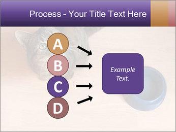 0000074125 PowerPoint Template - Slide 94