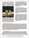 0000074125 Word Template - Page 4