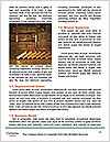 0000074127 Word Template - Page 4