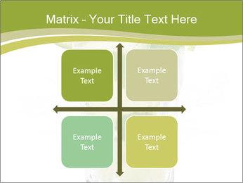 0000074130 PowerPoint Template - Slide 37