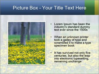 0000074138 PowerPoint Template - Slide 13