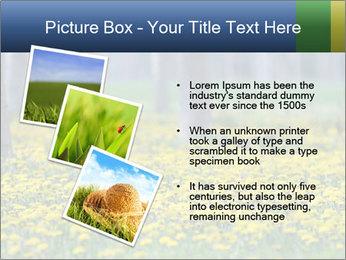 0000074138 PowerPoint Template - Slide 17