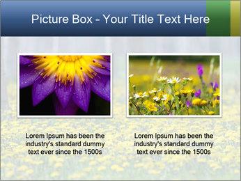 0000074138 PowerPoint Template - Slide 18