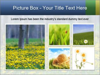 0000074138 PowerPoint Templates - Slide 19