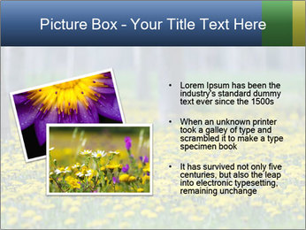 0000074138 PowerPoint Template - Slide 20