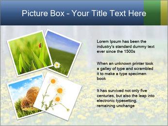 0000074138 PowerPoint Template - Slide 23