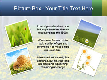 0000074138 PowerPoint Template - Slide 24