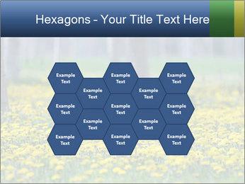 0000074138 PowerPoint Templates - Slide 44