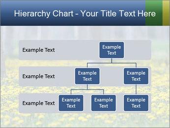 0000074138 PowerPoint Templates - Slide 67