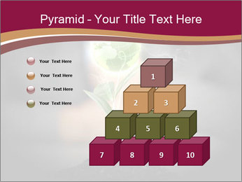 0000074145 PowerPoint Templates - Slide 31
