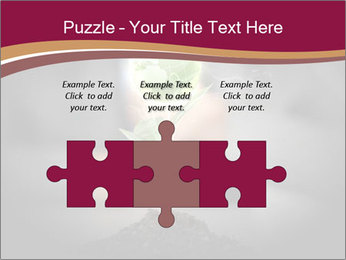 0000074145 PowerPoint Templates - Slide 42