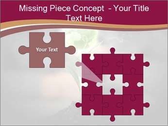 0000074145 PowerPoint Templates - Slide 45