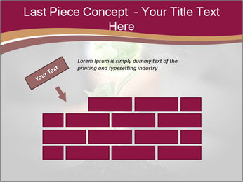 0000074145 PowerPoint Templates - Slide 46