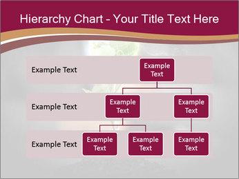 0000074145 PowerPoint Template - Slide 67