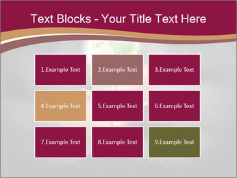 0000074145 PowerPoint Templates - Slide 68