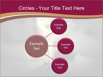 0000074145 PowerPoint Templates - Slide 79