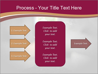 0000074145 PowerPoint Template - Slide 85