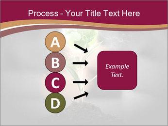 0000074145 PowerPoint Template - Slide 94