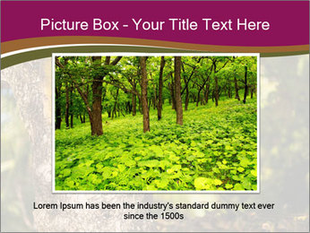 0000074152 PowerPoint Template - Slide 15