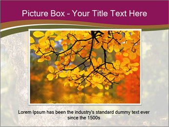 0000074152 PowerPoint Template - Slide 16