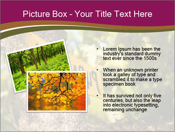 0000074152 PowerPoint Template - Slide 20