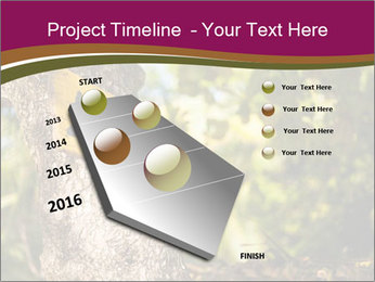 0000074152 PowerPoint Template - Slide 26