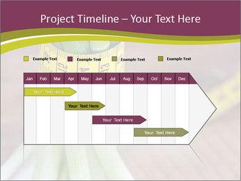 0000074153 PowerPoint Templates - Slide 25