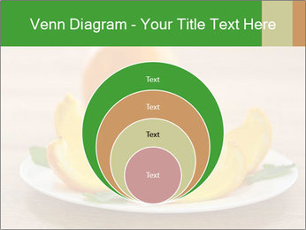 0000074161 PowerPoint Templates - Slide 34