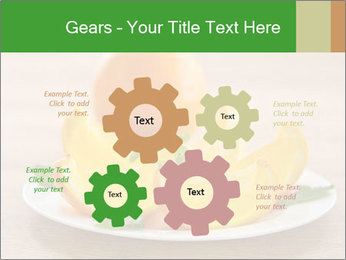 0000074161 PowerPoint Templates - Slide 47