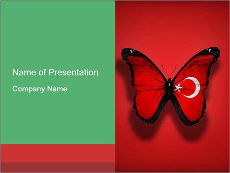 0000074174 PowerPoint Templates