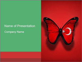 0000074174 PowerPoint Template - Slide 1