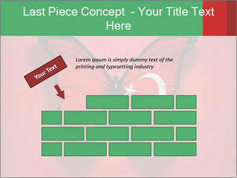 0000074174 PowerPoint Templates - Slide 46