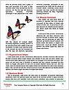 0000074174 Word Templates - Page 4
