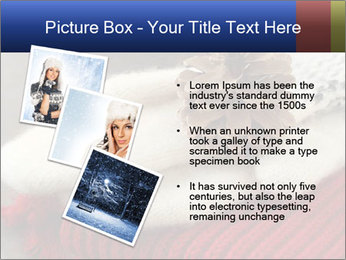 0000074176 PowerPoint Templates - Slide 17
