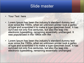 0000074176 PowerPoint Template - Slide 2