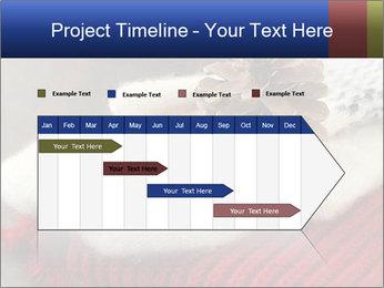 0000074176 PowerPoint Templates - Slide 25