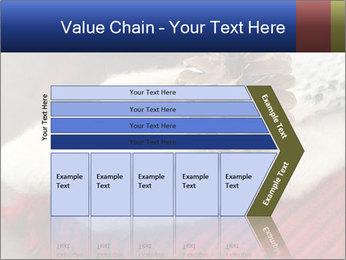 0000074176 PowerPoint Templates - Slide 27