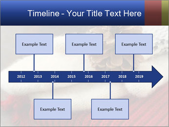 0000074176 PowerPoint Templates - Slide 28