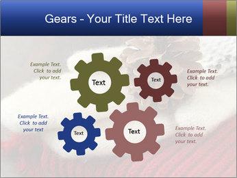 0000074176 PowerPoint Templates - Slide 47