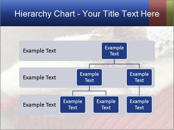0000074176 PowerPoint Templates - Slide 67