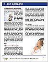 0000074176 Word Template - Page 3