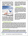 0000074182 Word Template - Page 4