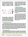 0000074192 Word Template - Page 4