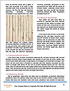 0000074206 Word Template - Page 4