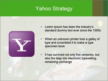 0000074221 PowerPoint Template - Slide 11